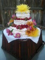 Affordable Wedding Cakes (Westminster)