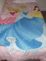 Disney Princess Comforter (Only 1 month old!) - $15 (Delaware)