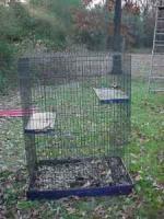 Ferret cage - $40 (Nash, Tex.)