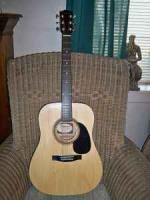 Johnson guitar - $100 (Claxton)