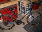 murray 18 spd girls bike - $40 (temple pa)