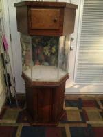 Octagon Aquarium - $200