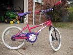 Pink/Purple 20 inch bike - $20 (Bellevue)