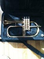 Trumpet/Flugelhorn - $125 (Commerce City)